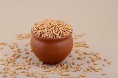 Wheat grains in clay pot. Close up of Wheat grains in clay pot Stock Photography