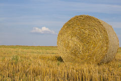 Close-up of wheat straw bale. After harvest Stock Images