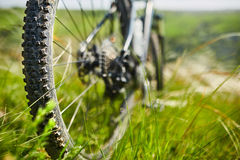 Close-up of the wheel of mountain bicycle in the green grass in the meadow in the countryside. royalty free stock image