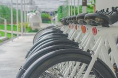 Close up wheel of rental bicycles that parking on concrete floor at outdoor garden. Royalty Free Stock Images