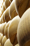 Close up of wheels of cheese Royalty Free Stock Photography