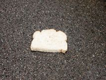 Close up of white bread on wet pavement floor dropped Royalty Free Stock Photo