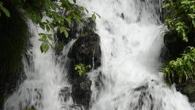 Cascade falling among stones. Close up white cascade falling among stones beside green plants in Kagoshima stock video footage