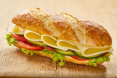 Close up on white cheddar cheese sandwich Royalty Free Stock Image