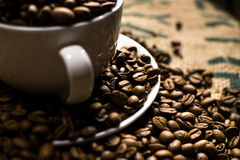 Close up of a white coffee cup full of coffee beans, surrounded. By even more coffee beans Royalty Free Stock Photo