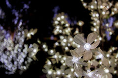 Close up white flowers have led light in soft focus Royalty Free Stock Images