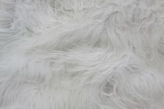 Close up of white fur texture. White wool carpet. White fur texture. White wool carpet stock photos