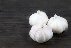 Close up white garlic. On wood background Royalty Free Stock Images