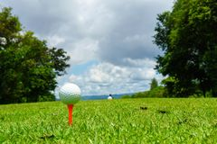 Close up of white golf ball on orange tee on green grass with blue sky and cloud. copy space for your text.  Royalty Free Stock Images