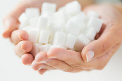 Close up of white lump sugar in woman hands Royalty Free Stock Images