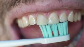 Close up of white man brushing his teeth with an electric toothbrush. Man`s open mouth as he brushes his teeth. Man with bristles brushing his teeth in morning stock video