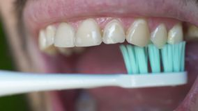 Close up of white man brushing his teeth with an electric toothbrush. Man`s open mouth as he brushes his teeth. Man with bristles brushing his teeth in morning stock footage