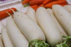 Radish. The close-up of white radish Royalty Free Stock Image