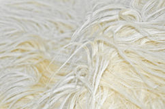 Close up of white sheep wool. Texture background Stock Image