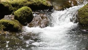 Close up white stream Stock Photography