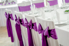 Close-up of white wedding chairs Royalty Free Stock Images