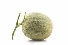 Close up of whole cantaloupe fruit. Royalty Free Stock Photography