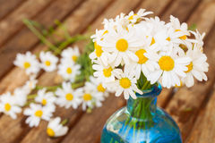 Close up of whute dasy flowers posy. Close up of fresh whute dasy flowers posy royalty free stock photo