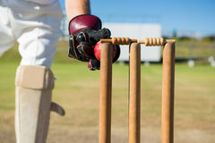Close up of wicket keeper standing by stumps during match stock photo