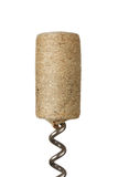 Close up of wine cork Stock Photography
