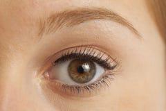 Close up of woman's eye Stock Photos