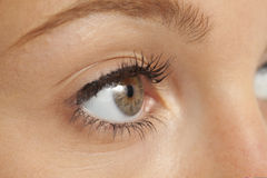 Close up of woman's eye royalty free stock image