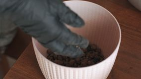 Close-up of a woman in black gloves pours into a flower pot drainage.
