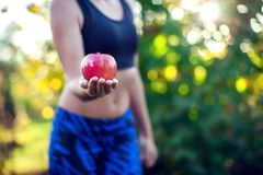 Close-up of a woman body. Woman holding an apple. Dieting concep royalty free stock photos