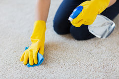 Close up of woman with cloth cleaning carpet Royalty Free Stock Photo