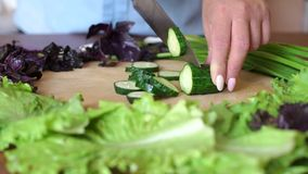 Close-up of a woman cutting a fresh cucumber on a wooden chopping Board. Close-up of women`s hands cut fresh cucumber on a wooden chopping Board, next are fresh stock video footage