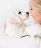 Close up of woman embracing puppy Royalty Free Stock Images