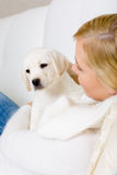 Close up of woman embracing puppy of labrador Royalty Free Stock Photos