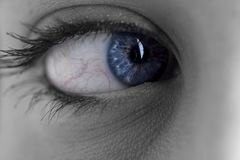 Close-up of woman eye Royalty Free Stock Photography