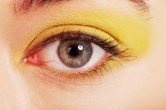 Close up on woman eye with an artistic makeup Stock Image
