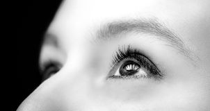 Close-up woman eye black and white Royalty Free Stock Image