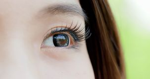 Close up of woman eye Royalty Free Stock Images
