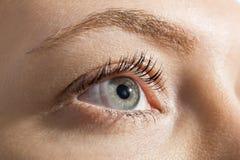 Close up Woman Eye Looking Up Royalty Free Stock Image
