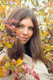 Close-up of woman eyes and autumn stock image