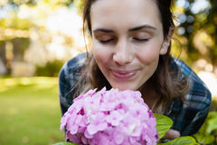 Close-up of woman with eyes closed smelling purple hydrangea flowers. At backyard Royalty Free Stock Photography