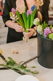 Flosist working with hyacinths, making arrangements. Royalty Free Stock Images