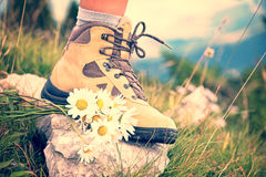 Close up of a woman foot in a hiking shoe and a bunch od daisies on a mountain trail Royalty Free Stock Photos