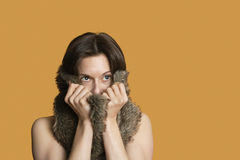 Close-up of woman with fur on face looking away over colored background Royalty Free Stock Image