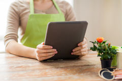 Close up of woman or gardener holding tablet pc. People, gardening, flowers and profession concept - close up of woman or gardener holding tablet pc computer at Royalty Free Stock Images