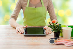 Close up of woman or gardener with tablet pc. People, gardening, flowers and profession concept - close up of woman or gardener with tablet pc computer sitting Stock Photos