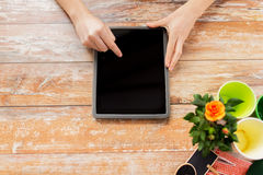 Close up of woman or gardener with tablet pc. People, gardening, flowers and profession concept - close up of woman or gardener pointing finger to tablet pc Stock Photo