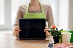 Close up of woman or gardener with tablet pc. People, gardening, flowers and profession concept - close up of woman or gardener showing tablet pc computer black Stock Photography