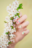 Close up of woman hand and blossomed tree branch Royalty Free Stock Image