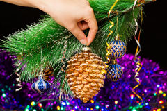 Close-up of woman hand hanging decorative toy pine cone on Christmas tree branch Stock Image