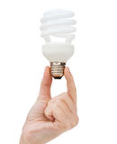 Close up of woman hand holding light bulb Stock Image