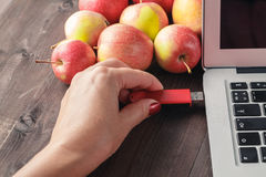 Close up of a woman hand plugging  red pendrive on a laptop. Close up of woman hand plugging red pendrive on  laptop with apple Stock Photo